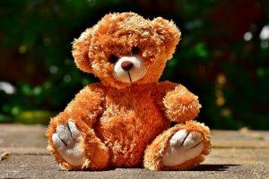 I know a teddy bear