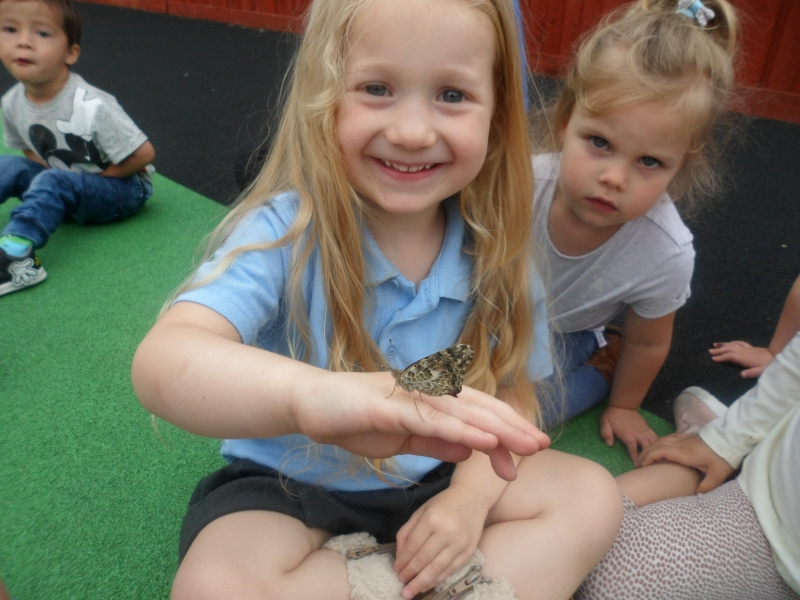 Wildlife at Holly Tree Childrens Nursery